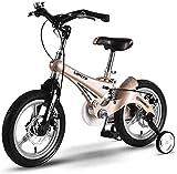 LYP Triciclo Bebé Trolley Trike Bicicleta for niños Conveniente 12/14/16 Pulgadas Cochecito de bebé 3-6 años de Edad Montaña Bicicleta Bicicleta Bicicleta Bicicleta Bicicleta cómoda