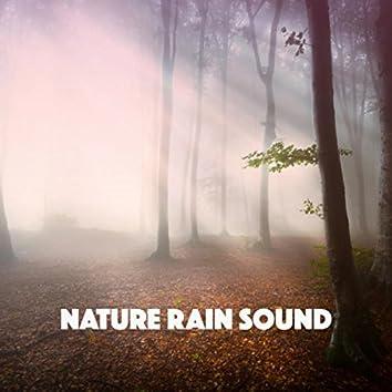 Nature Rain Sound