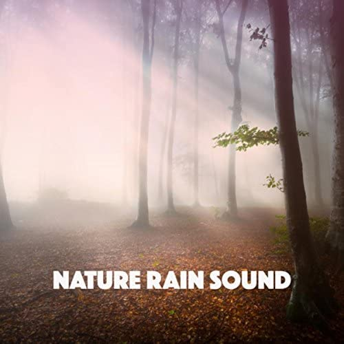 Nature Sounds, White Noise Therapy & Sleep Sounds of Nature