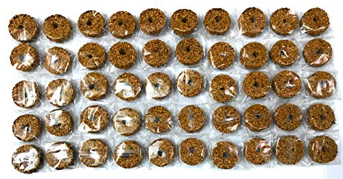 Discos de mosquitos larvas hongos gnats