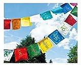 dsnetz Tibetische Gebetsfahnen Om Ma NI Padme Hum Mantra | Buddhistische flatternde Gebet-Fahne | Tibet Buddha Tradition | Meditation Ritual | Esoterik Geschenke günstig online kaufen