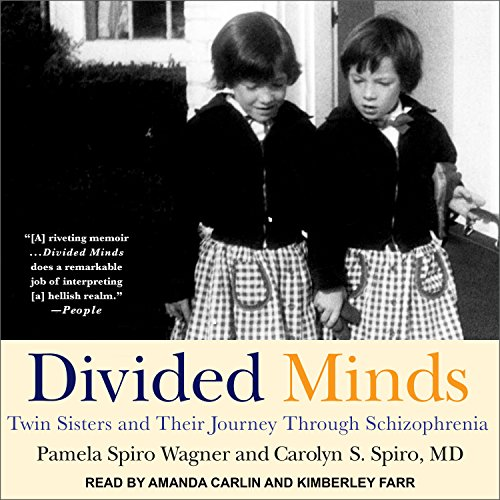 Divided Minds audiobook cover art