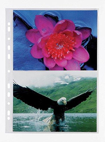Favorit 100460152 - Cubiertas fotográficas, 21 x 15 cm, paquete de 10