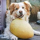 Crazy Egg GELB das unfassbare Spiel Ei für den Hund - 3