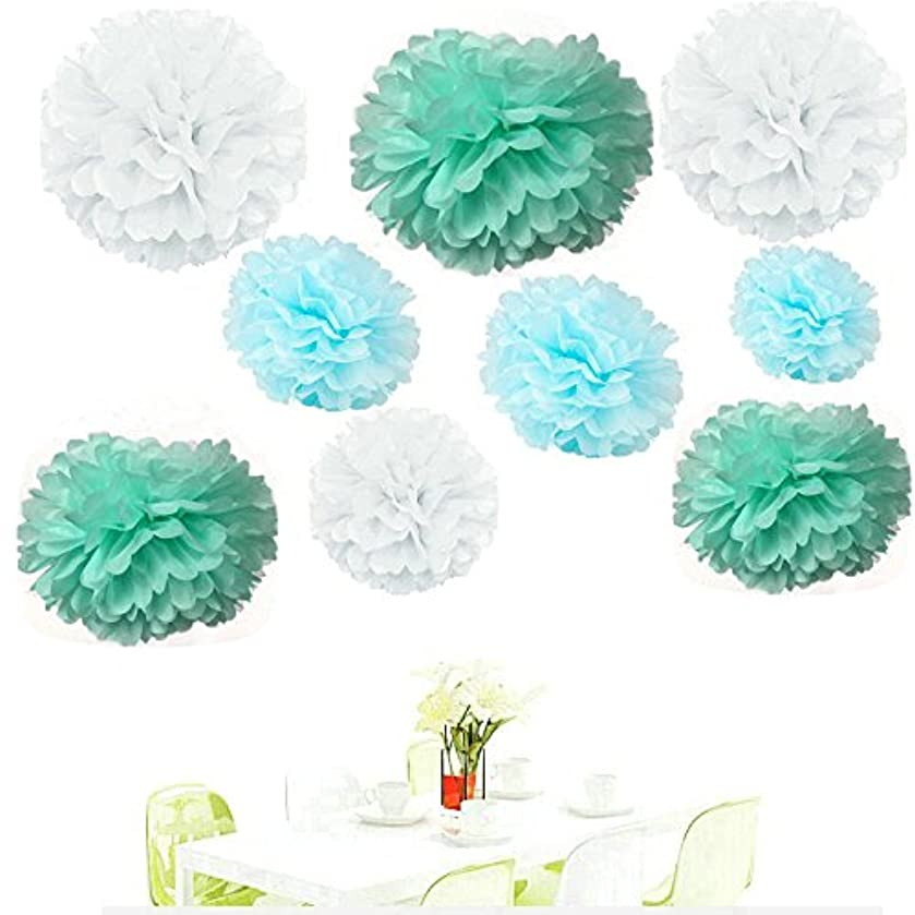 Since ? ack of 18 Mixed White Blue Mint Tissue Pom Poms Paper Flower Pompoms Wedding Birthday Party Nursery Decoration