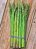 Asparagus Seed, Precoce D'argenteu, Heirloom, Non Gmo, Organic 25+...