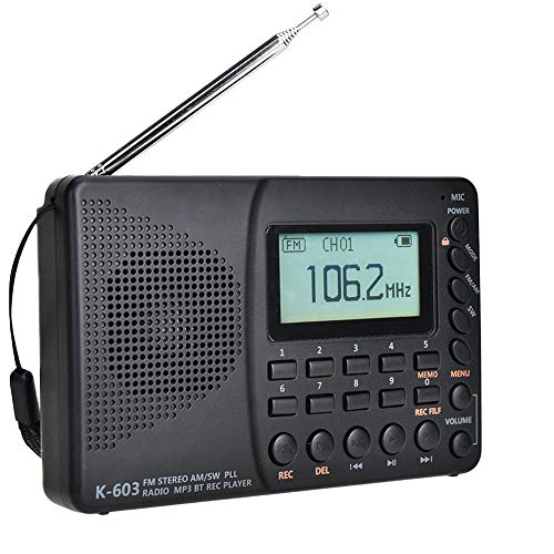 sound portable radios Voigoo FM/AM/SW Radio Multiband Portable Radio Receiver REC Recorder Bass Sound MP3 Player Speakers with Sleep Timer