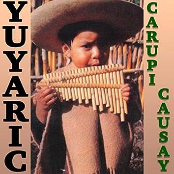 Carupi Causay