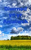 Diwrnod yn yr Anialwch (Welsh Edition)