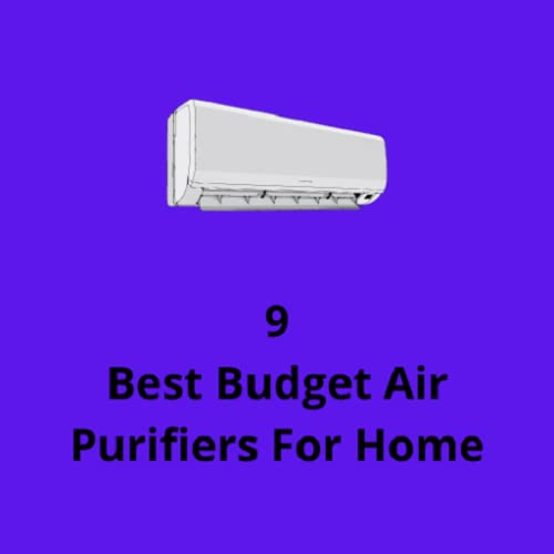 9 Best Budget Air Purifiers For Home
