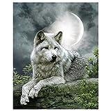 Kit de peinture diamant 5D pour adultes, enfants. LANSUER Décoration de maison, chambre, bureau, cadeau pour elle qui regarde un loup solitaire 30 x 40 cm