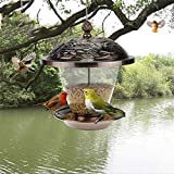Z-ZH Mangiatoia per Uccelli, Contenitore per Semi di Girasole per mangime per Uccelli, per Campo Giardino Interno ed Esterno