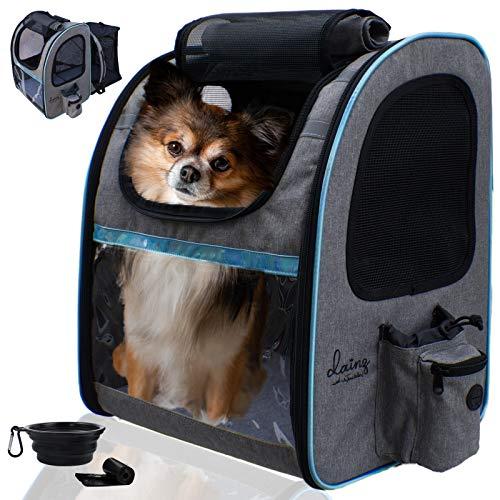 dainz ® Hunderucksack für kleine Hunde bis 8kg [praktische 2in1 Funktion] Katzenrucksack atmungsaktiv, faltbar - Tragehilfe inkl. Sicherheitsgurt +Zubehör | Haustier Rucksack zum Wandern, Reisen