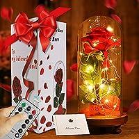 APERIL La Bella y la Bestia Rose Roja Kit Completo con Cúpula de Cristal Luz LED y Base de Madera Marrón Cubierta para la Decoración San Valentín Boda Fiesta Cumpleaños Aniversario Día de la Madre