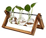 TQVAI Air Planter Terrarium Glass Vase(3 Diamond Glass Vase) with Retro Wooden Stand and Metal Swivel Holder Cute Air Plant Globe - Ideal for Home Office Decoration, Swinging Style