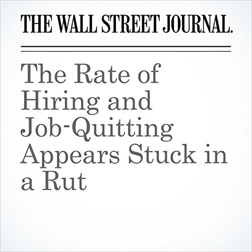 The Rate of Hiring and Job-Quitting Appears Stuck in a Rut copertina