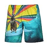 Hombres Bañador, Playa Verano Deportes Animal De La Historieta Autobús Divertido Libre De Secado Rápido De Surf Liner Netas Pantalones Cortos,a,XL