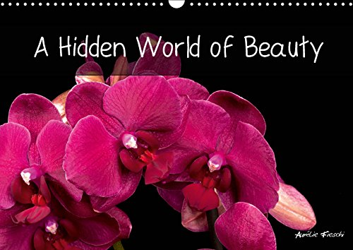 A Hidden World of Beauty 2019: Welcome to my universe - graphic and rich in colour, full of different visual experiences. (Calvendo Nature)