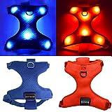 EXPERSOL Arnés de Malla Suave LED Recargable USB para Perros (Mayor Visibilidad y Seguridad) Pequeña Azul