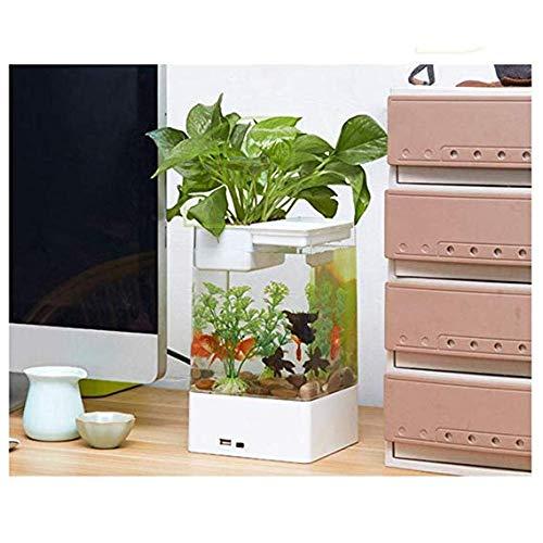 WTTTTW LED Mini Aquarium Aquarium, selbstreinigende Grass Kits LED Bunte Beleuchtung würfelförmige Sockelbasis,Weiß