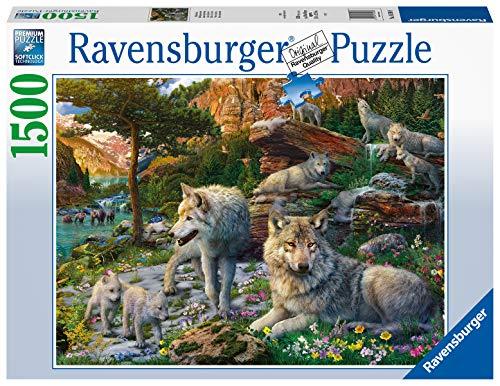 Ravensburger Lupi in Primavera, Puzzle 1500 pezzi, Relax, Puzzles da Adulti, Dimensione: 80x60 cm, Stampa di alta qualità, Animali