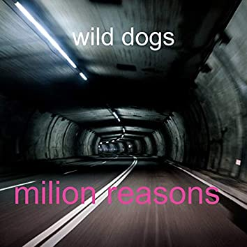 milion reasons