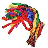 F Fityle 12 Piezas de Mano Arcoíris Danza Cinta Accesorios de Escenario Juguetes para Niños Multicolor