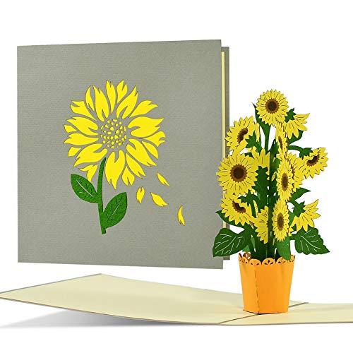Geburtstagskarte mit Sonnenblumen z.B. für Frauen   Fröhliche Sonnenblumen Pop up Karte Geburtstag   Glückwunschkarte oder Gutschein zum Geburtstag, Muttertag, F21