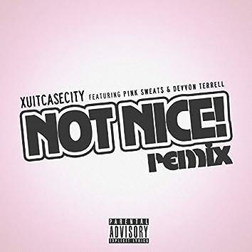 Not Nice (Remix)