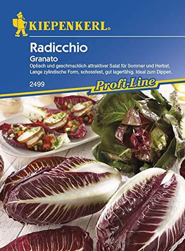 Kiepenkerl Radicchio Granato