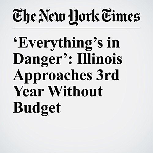 'Everything's in Danger': Illinois Approaches 3rd Year Without Budget copertina