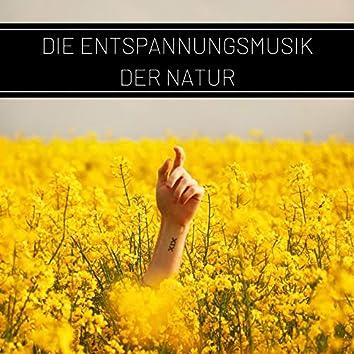 Die Entspannungsmusik der Natur: Wellness, Entspannung und Autogenes Training, Vogelstimmen