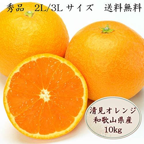清見オレンジ 2L 4P