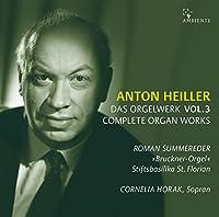 Organ Works Vol.3: Summereder(Organ) C.horak(S)