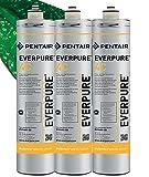Everpure Filtro 4c - Confezione da 3 Filtri