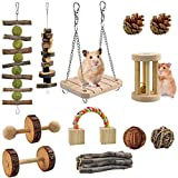 XINHUAN Hamster Chew Toys, 10Pack Natural Wooden Pine Guinea Pigs Rats Chinchillas Toys Accessories Dumbells Exercise Bell Roller Teeth Care Molar Toy for Bunny Rabbits Xmas Gift