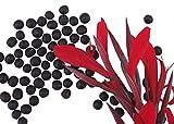 Canna - Indisches Blumenrohr 'Canna indica' 10 Samen
