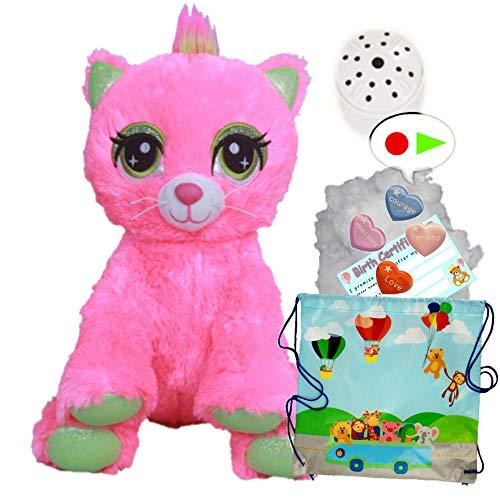 Juguete suave de peluche de gato rosa – Construye tu propio kit de fabricación de oso de peluche, sin costura… (kit de grabadora de voz de 40 cm)