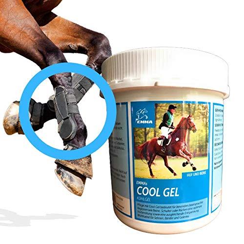 EMMA® Paardenbalsem voor paarden I Arnica Paardenzalf I Koelgel I Paardenzalf extra sterk verkoelend I Paardensportzalf 1000ml