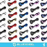 Bluewheel HX310s - 9