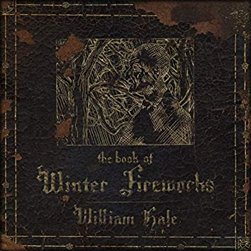 The Book of Winter Fireworks