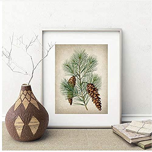 Canvas print,Pine Plant Vintage illustraties Posters en prints Evergreen dennenappels Botanische planten Wall Art Creativiteit Home Decor-40x60cm