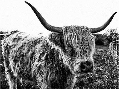 Bordado de diamantes Highland Cow taladro redondo completo pintura de diamante punto de cruz negro blanco animales mosaico decoración del hogar A2 40x50cm