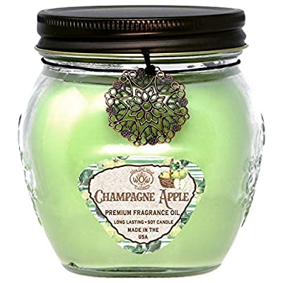 Way Out West Aromatherapy Scented Candles -Stress Relief & Relaxation, 60 Hour Long Burning Natural Candle