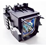 Sony XL-5100 TV Assembly Cage with Projector bulb