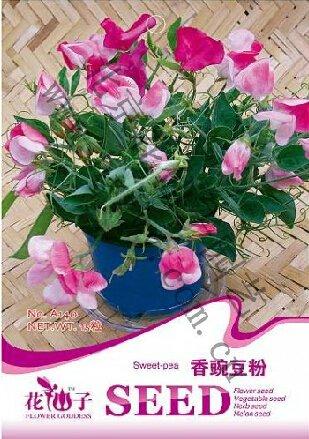 (Mix minimum 5 $) 1 paquet d'origine graines 15 pcs semences Sweet pois de senteur pois Fleur Lathyrus Livraison gratuite