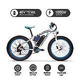 RICH BIT 022 E-Bike Mountainbike, 1000W, 48V 17Ah Akku, 26' Zoll (Bleu)