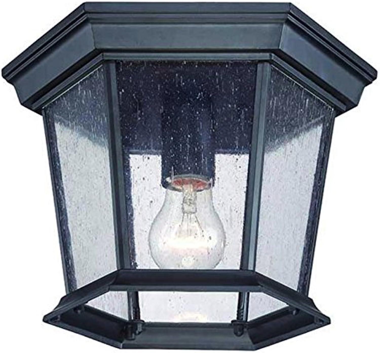 Acclaim 5275BK SD Dover Collection 1-Light Ceiling Mount Outdoor Light Fixture, Matte Black