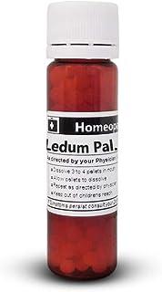 Ledum Palustre 200C Homeopathic Remedy - 200 Pellets