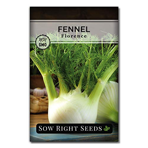 Sow Right Seeds - Fennel Seeds for Planting; Non-GMO Heirloom Seeds with Instructions to Plant an Easy to Grow Home herb Garden, Indoor or Outdoor.